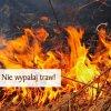 Wypalanie traw grozi utratą dopłat